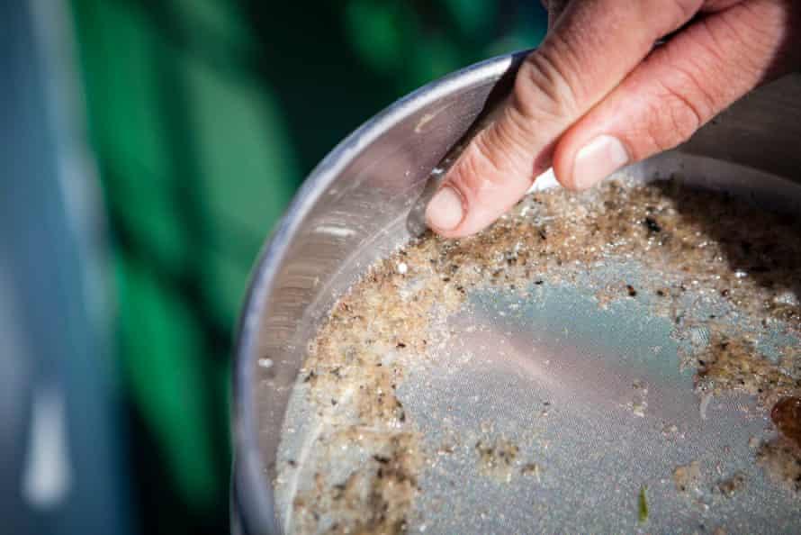 Greenpeace staff sample seawater for microplastics