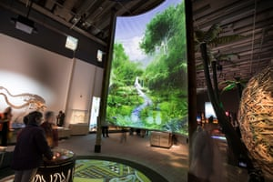 A view inside Te Taiao Nature at Te Papa, New Zealand's national museum.