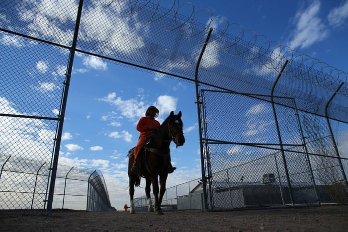 Wild horses tamed by prisoners – in pictures | Art and design | The ...