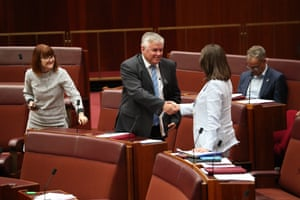 Liberal senator Susan McDonald crosses the floor to vote with the Greens, One Nation and Centre Alliance on a motion to disallow Casa from placing additional maintenance requirements on Angel Flight.