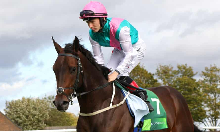 Siskin could stay at home for the Irish Guineas rather than travelling to Newmarket.