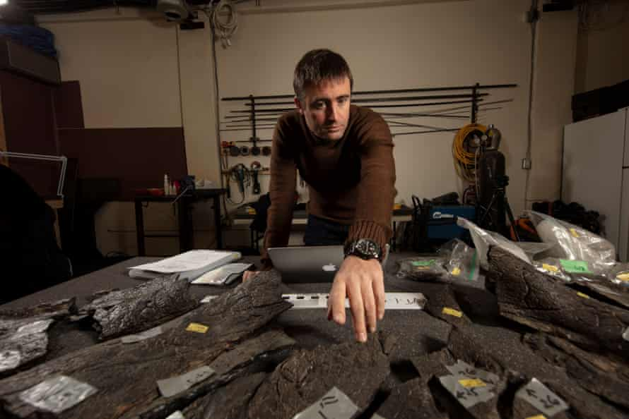 2. Dr Erich Fitzgerald counting the pieces of the frill of the Triceratops. Photographer - John Broomfield. Source - Museums Victoria