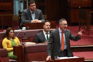 Greens leader Richard Di Natale during question time in the Senate on Thursday