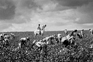 Grape Harvest, Jerez de la Frontera, Cádiz, 1963 'This exhibition captures scenes from that time projected on to the mirror of the ironic, carefree, direct eye of the author, who was determined to interpret the tourist cliches from a local vantage point. Silent irony to counter the censors.'