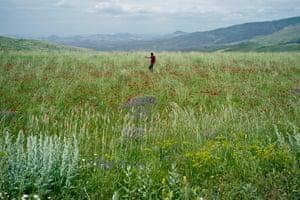 FPWC Ranger Manuk Manukyan photographing spring flowers, Armenia.