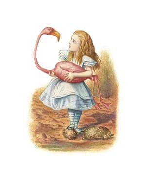 Alice and Dodo
