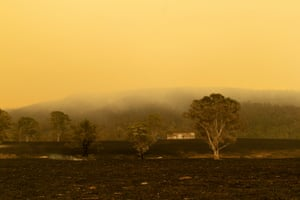 Cobargo Fire 2020From Queensland to Victoria, the coastline was engulfed by hundreds of raging infernos. We are used to fires in this country, but I couldn't recall anything on this scale and with this ferocity.