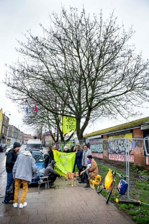 Protesters demonstrate against the felling of five maple trees in St Paul's, Bristol.