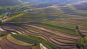 Baiya township, China Terrace fields stretch to the horizon, creating a dramatic landscape in Xiji county, in the autonomous region of Ningxia Hui