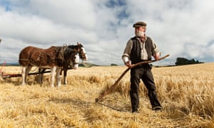 Terence Davies's new film version of Sunset Song