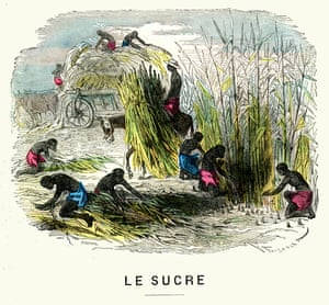 Slaves harvesting sugar cane, in an engraving from 1875.