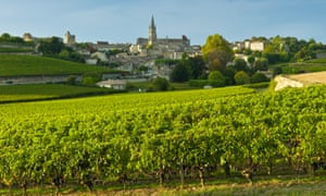 Wine country: Bordeaux is dominated by merlot and cabernet sauvignon, but other grapes such as lovely cabernet franc are every bit as nice.