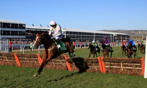 Faugheen is one of several horses expected to carry the silks of former Betbright chairman Rich Ricci at Cheltenham next week.