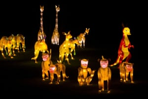 Light sculptures showing some of the menagerie of animals featured in the festival