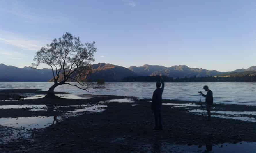 #thatwanakatree being photographed at sunset