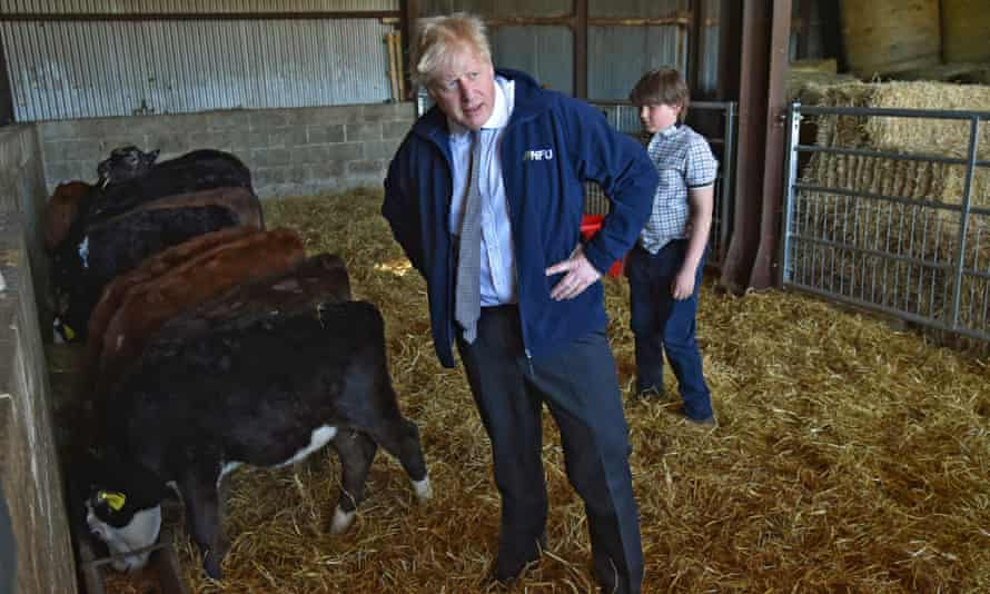 Boris Johnson on a campaign visit to a farm in Middleton, north-west England