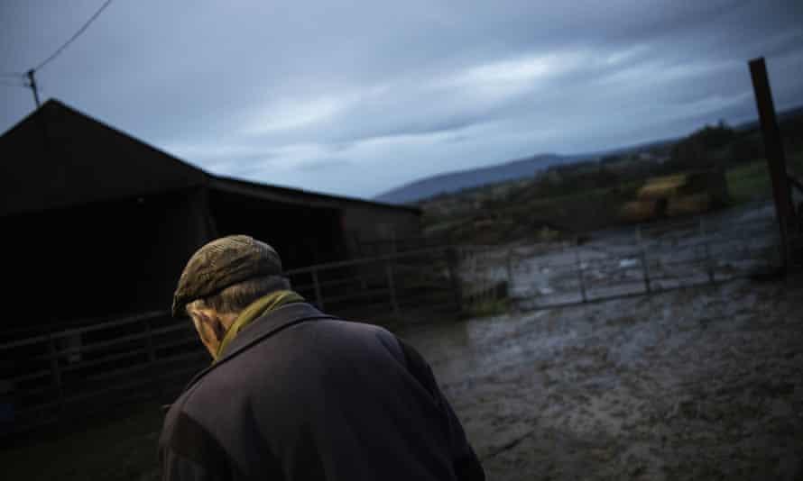 Farm Northern Ireland