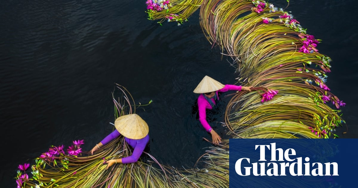 Drone Awards 2020: the world seen from above | Art and ...