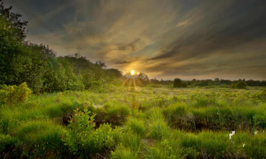 Montiagh's Moss at dusk, County Antrim, Northern Ireland, UK.
