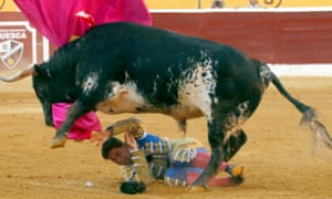 The bullfighter Francisco Rivera being trampled by a bull at the arena in Huesca this week.