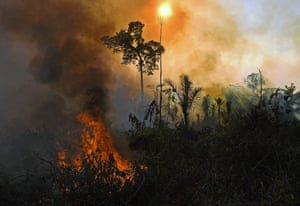 Smoke and flames rise from an illegally lit fire in the Amazon rainforest reserve, south of Novo Progresso in Para state, Brazil.