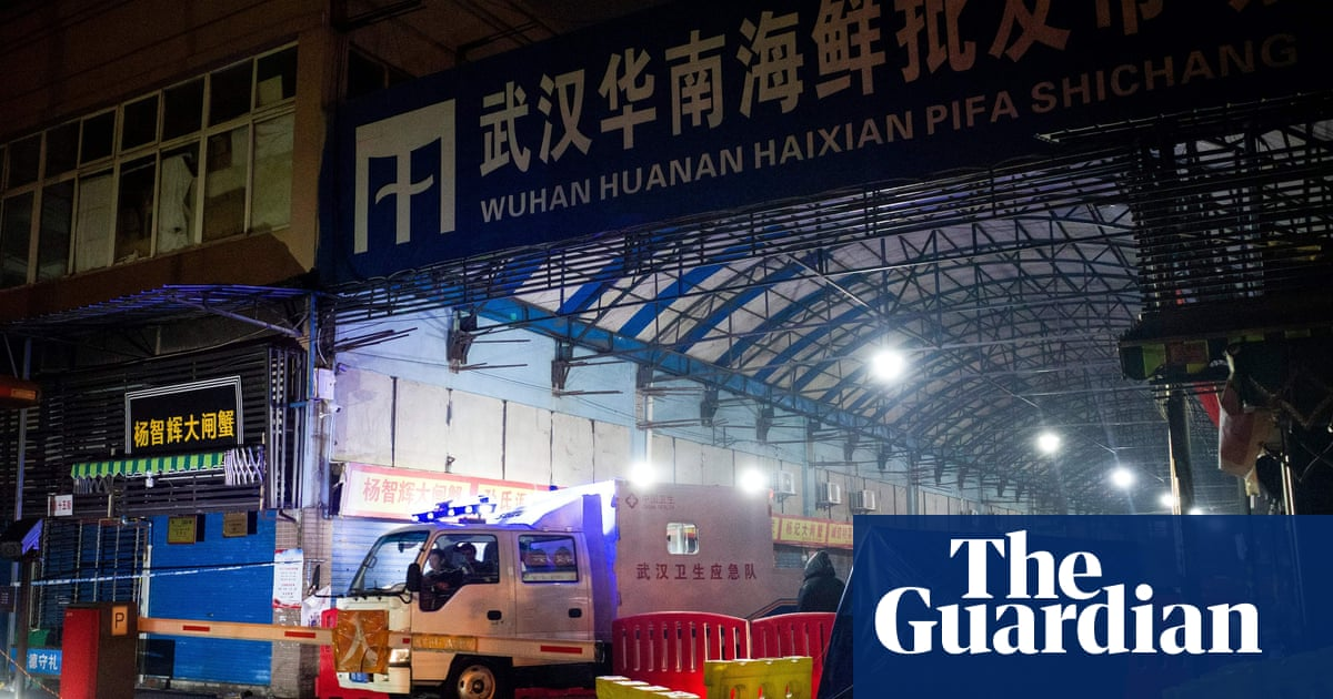 Covid investigators must interview Wuhan stall owners, says virologist