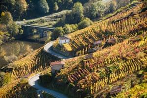 Ribeira Sacra vineyards and the River Miño.