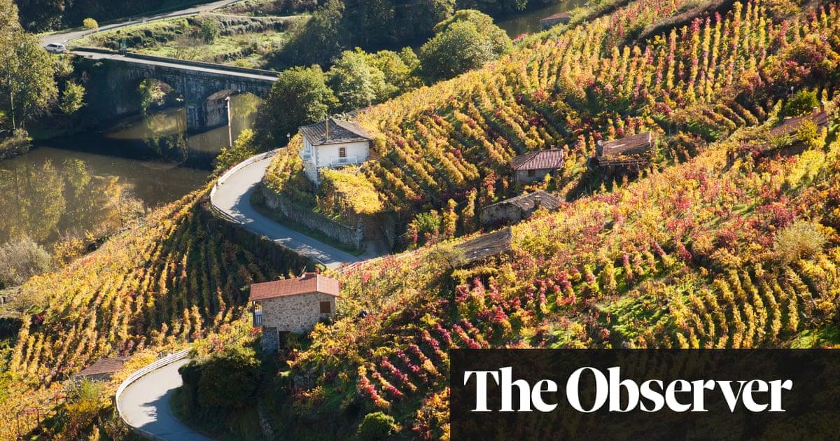 Wines that blur borders