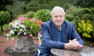 Sir David Attenborough: 'People say, How did you first become interested in animals?, and I say: Was there a time when you were not interested in animals?'