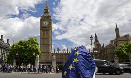 Demonstrator in EU flag