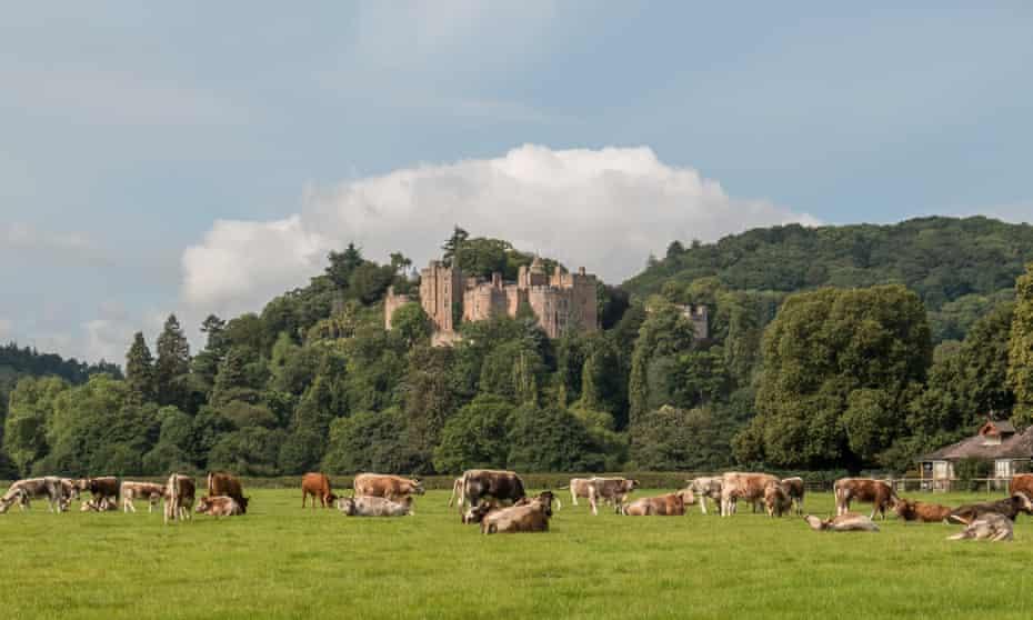 Dunster Castle, Exmoor.