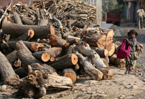 A rag picker walks past a pile of logs on the outskirts of Jammu in 2010. India has promised an afforestation project as part of its commitment to tackle climate change.