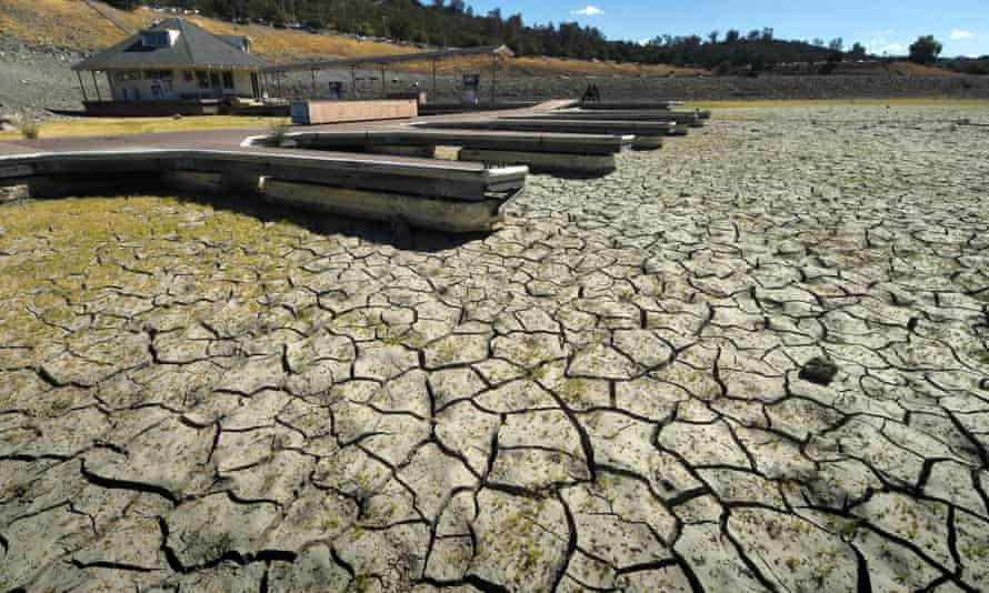 Southwestern states are increasingly turning to aquaculture as a way to conserve water amid the severe drought. Farmers are either raising fish on their own or partnering with other farmers to share water.