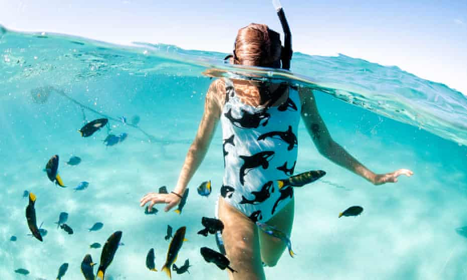 Batoko Orca Swimsuit Alex Kydd Photography