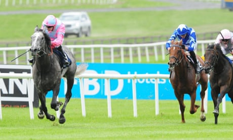 Irish racing to resume on 8 June at Naas with its Classics quick to follow