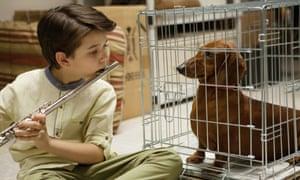 Pup music: Keaton Nigel Cooke in Wiener-Dog.