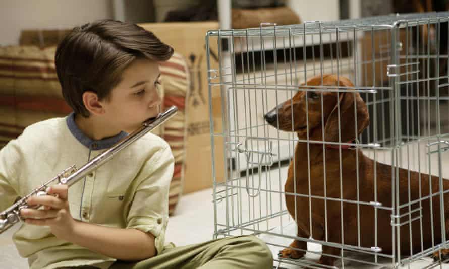 Still from Wiener-Dog by Todd Solondz