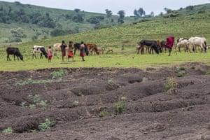 Soil erosion in Maasai heartlands in Tanzania.