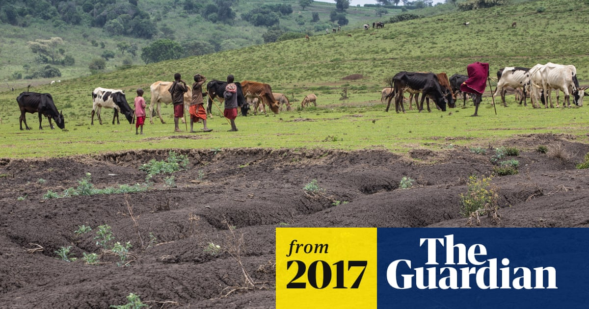 Third Of Earth S Soil Is Acutely Degraded Due To Agriculture