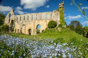 Jervaulx Abbey, Yorkshire Dales