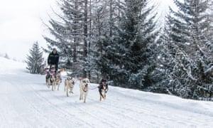 dog-sledding at La Rosière, France