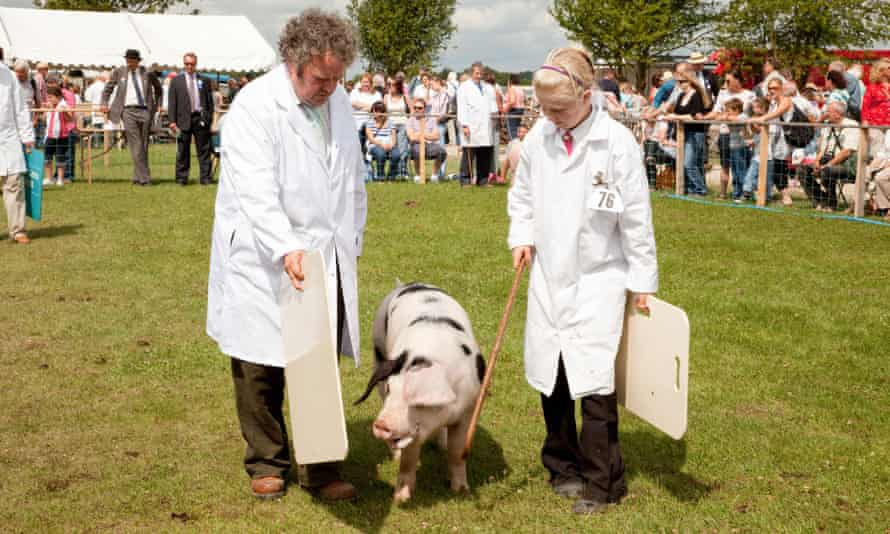 Pig judging at Driffield Show.