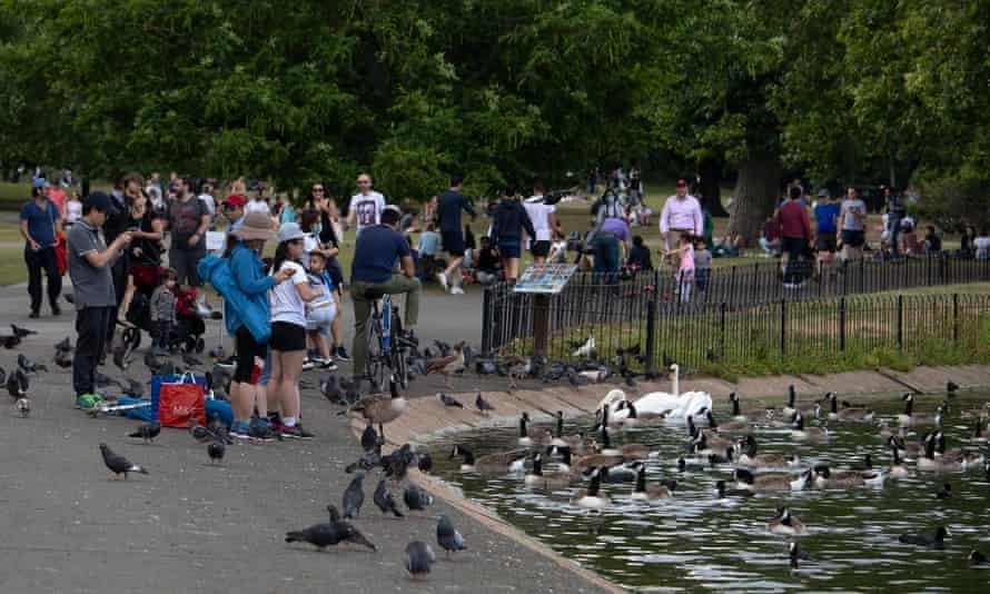 People watch ducks and swans in Regents Park, 13 June 2020 in London, UK.