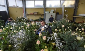Florists at work in Vatican City.