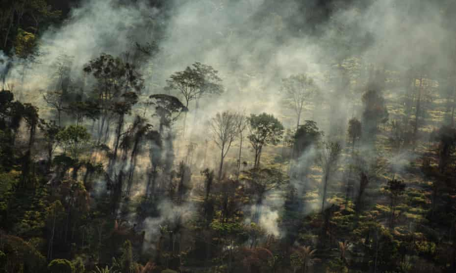 JBS said it was committed to ending deforestation throughout its supply chain.