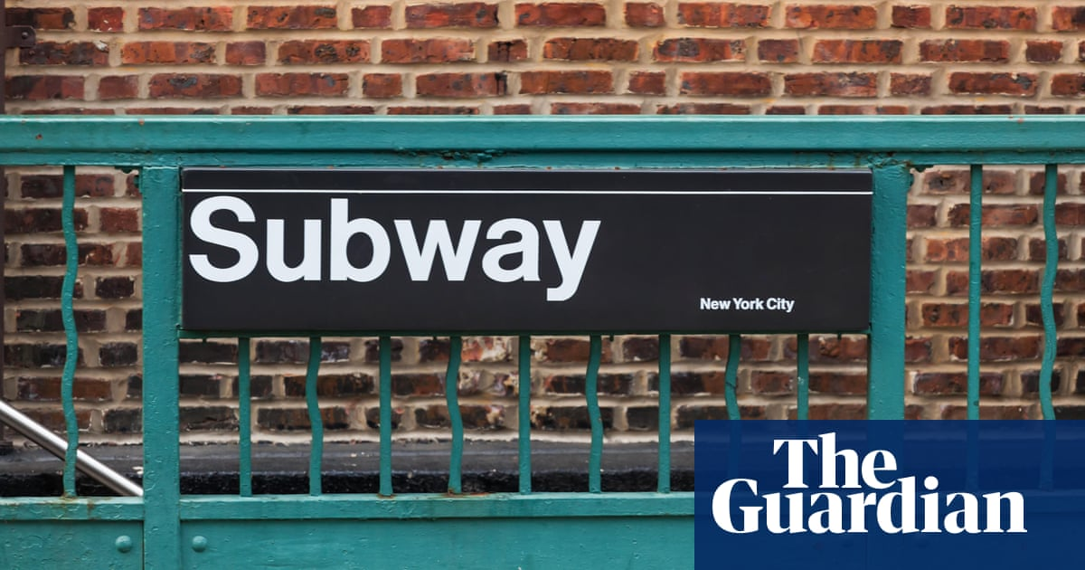 'That's not a bag': man with dog bends New York subway rule and gets denied