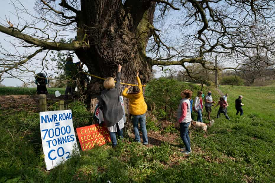 Residents gathered at the tree known as Darwin's oak.