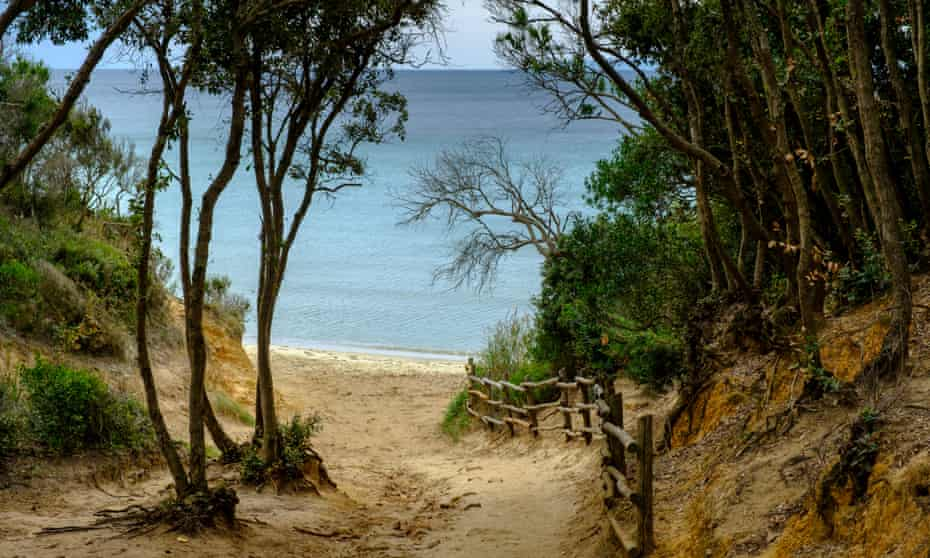 sandy path through trees down to the beach