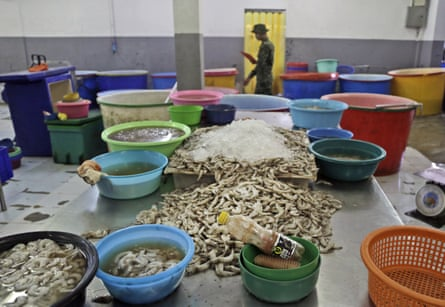 Shrimp are left on an abandoned peeling table as a Thai soldier walks past during a raid on the shrimp shed in Samut Sakhon, Thailand, 9 November 2015