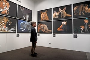 Isaac Busuttil gets a close look at a photo exhibition of threatened animals at Melbourne Zoo
